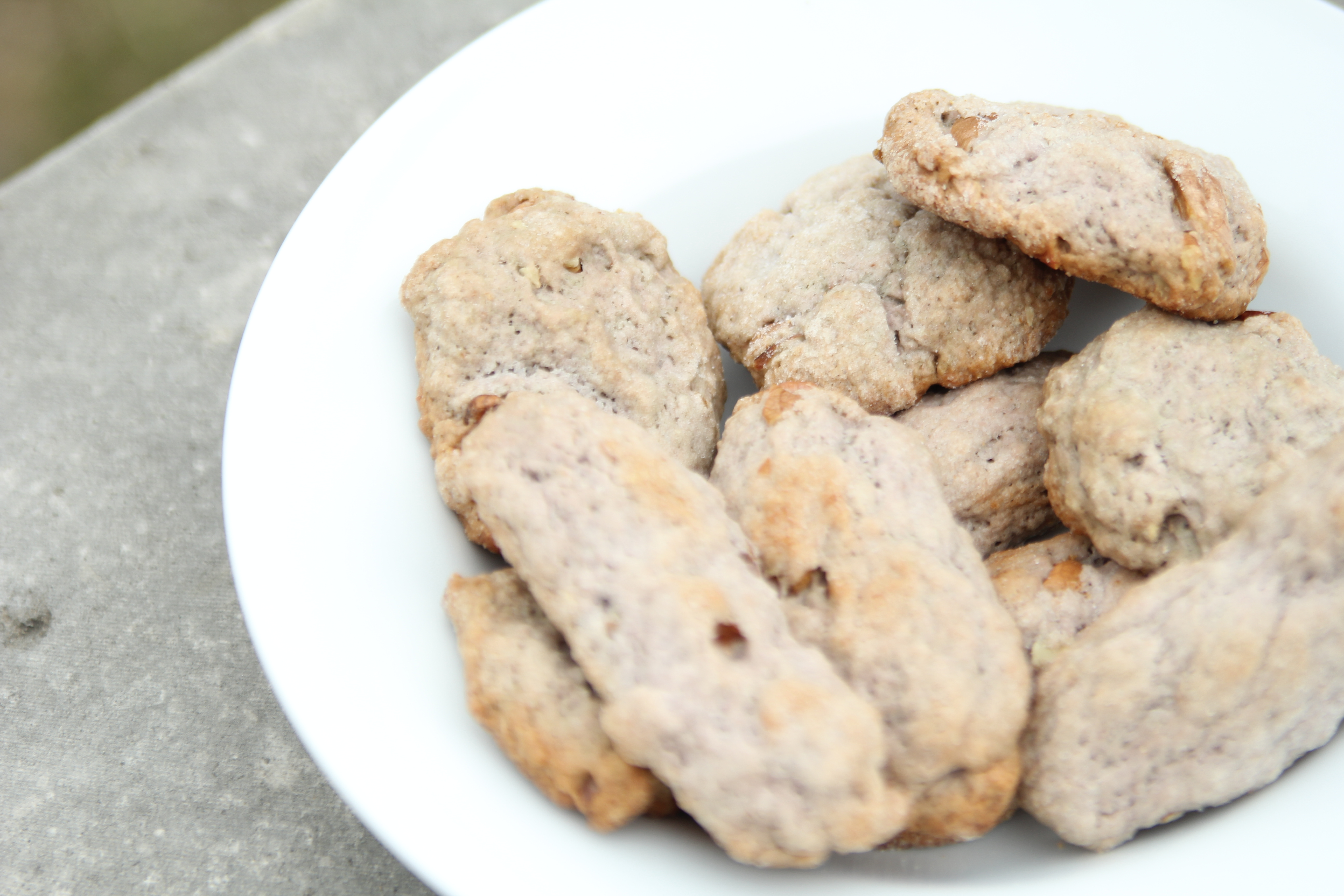 Grown Up Milk and Cookies: Tempranillo Biscotti | Brennan ...